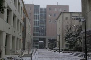 雪の文学研究科本館西側