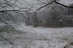 雪の中山池