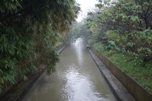 地点E:桃園大圳の用水路