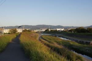朝の安威川。