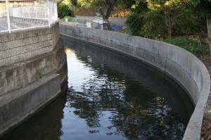 安威川から引いた水路。