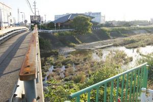 新旧茨木川の分岐点。